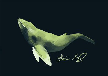 Color Challenge Humpback