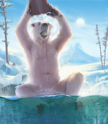 The Polar Relax