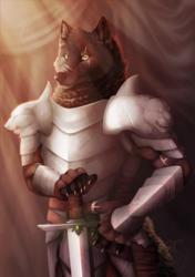 A knight in shining armor...