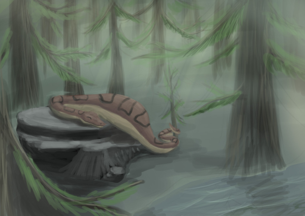 Nap in the Woods