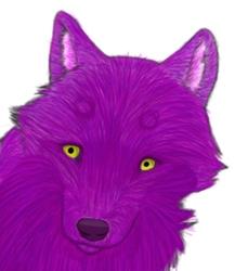 Zebedia Head Coloring Practice