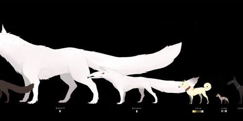 FEN . A Sheet of Common Known F5