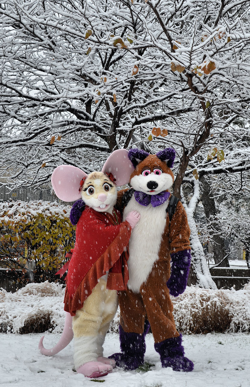 A Mouse & Fox at Christmas