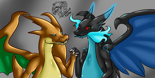 Only family they got +Mega Charizards+