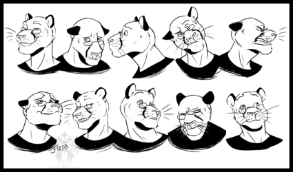 COMMISSION: Fireleif Expressions