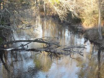 River echo