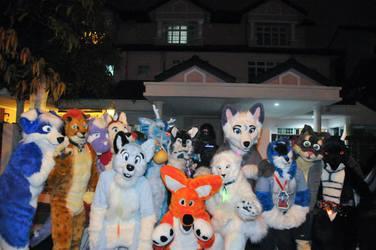 Halloween Night Fursuiter Group-2