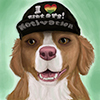 avatar of applesdonkey