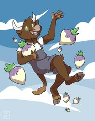 Turnip Dreams