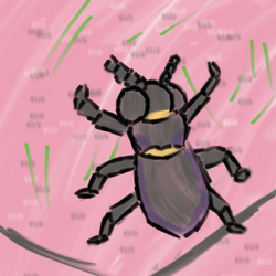 Bug time!