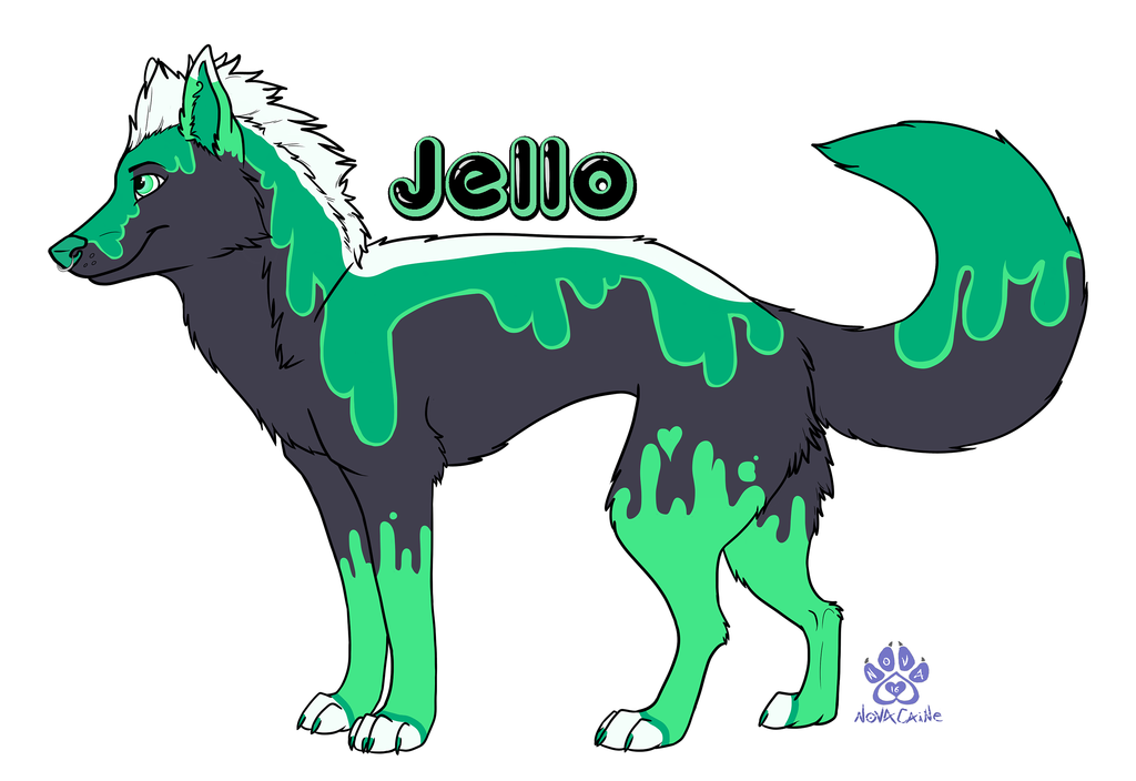 Most recent image: Jello