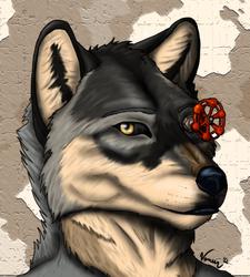 Valve Wolf