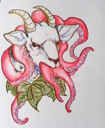 kraken goat