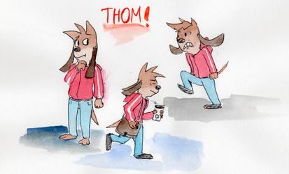 Some Thom