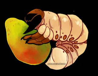 Mango Grub