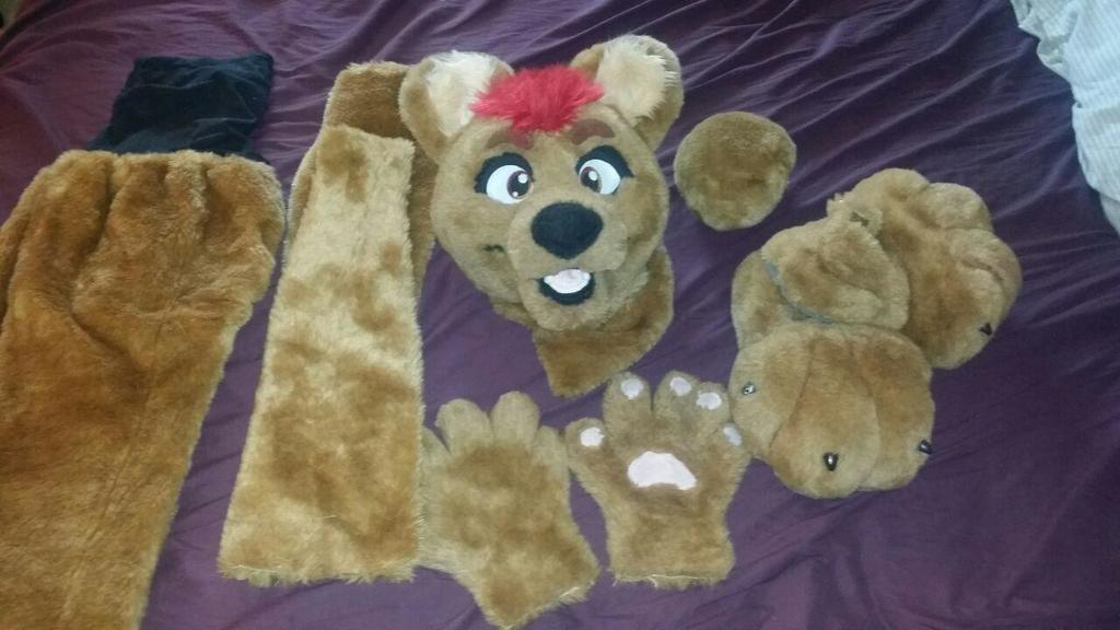 Most recent image: Partial fursuit for sale!