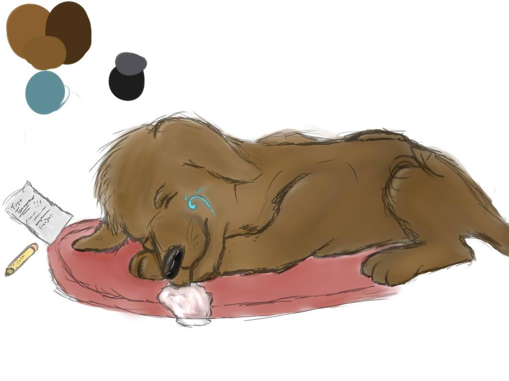 'Sleepy Puppy'