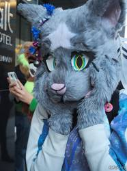 Canfurence 2016 - Silver