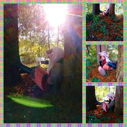 Tree-Time