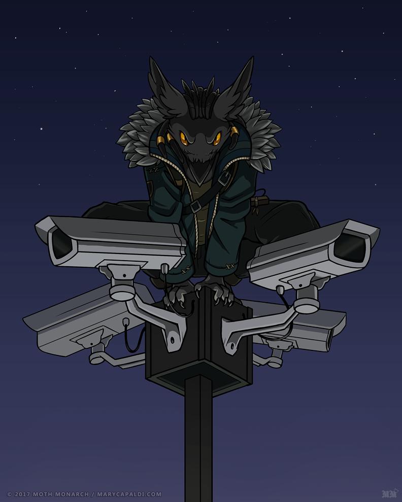 Dusk Watcher