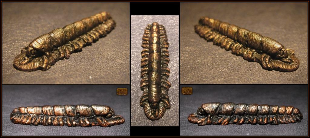 Featured image: Cast Resin Copper Millipede
