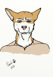 Dog man! (Colored)