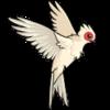 avatar of omnoms