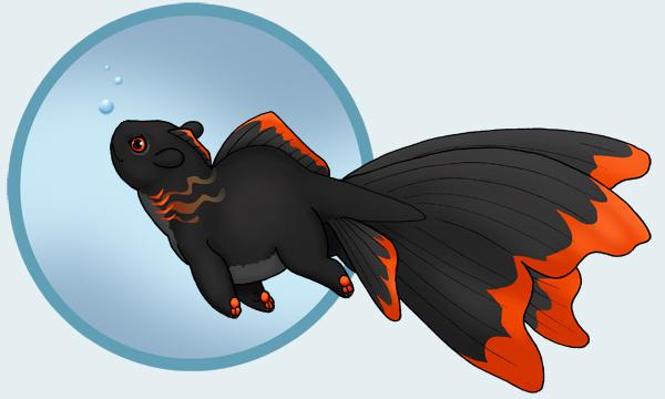 Fancy Goldfish Frigate Chaser