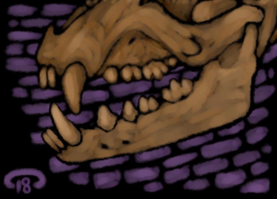 warmup skull