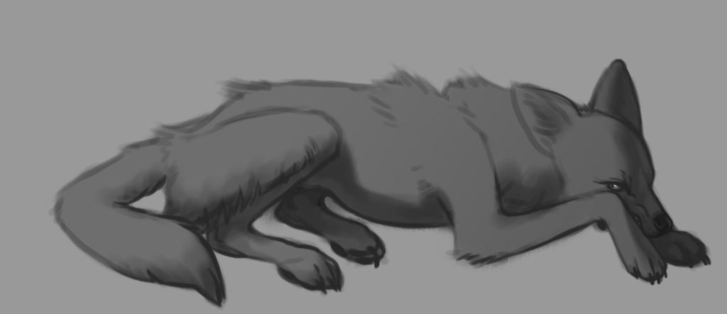 Grumpy coyote sketch