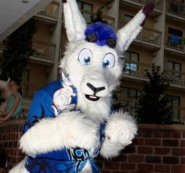 RMFC9 Rooth-roo