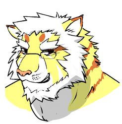Tiger Face by Afternoon