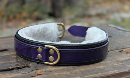 Thefrogbutt's Purple & Black Collar