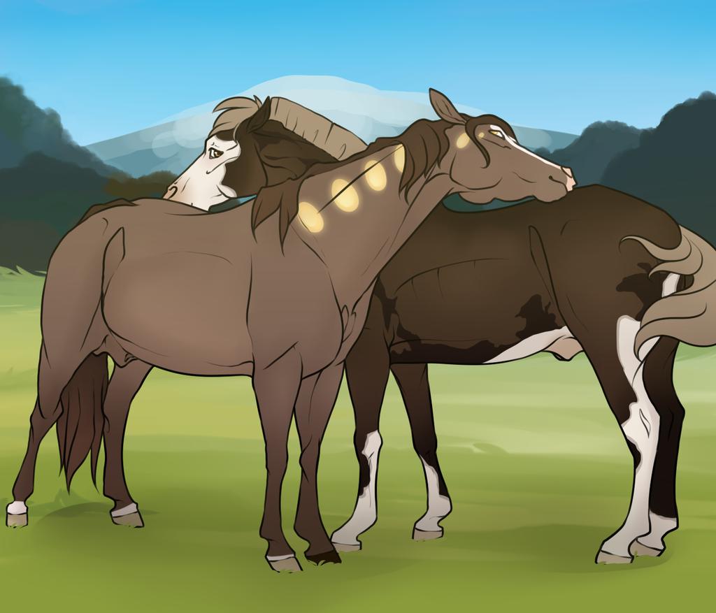 When Two Stallions Meet