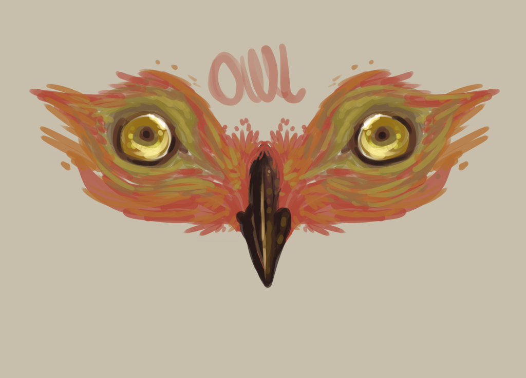 Most recent image: owl