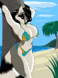 [Commission] Bikini Madness: Connie.