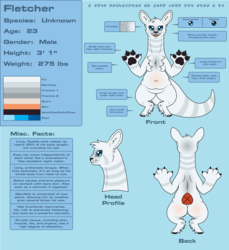 Fletcher Redesign Refsheet (SFW) Version 2