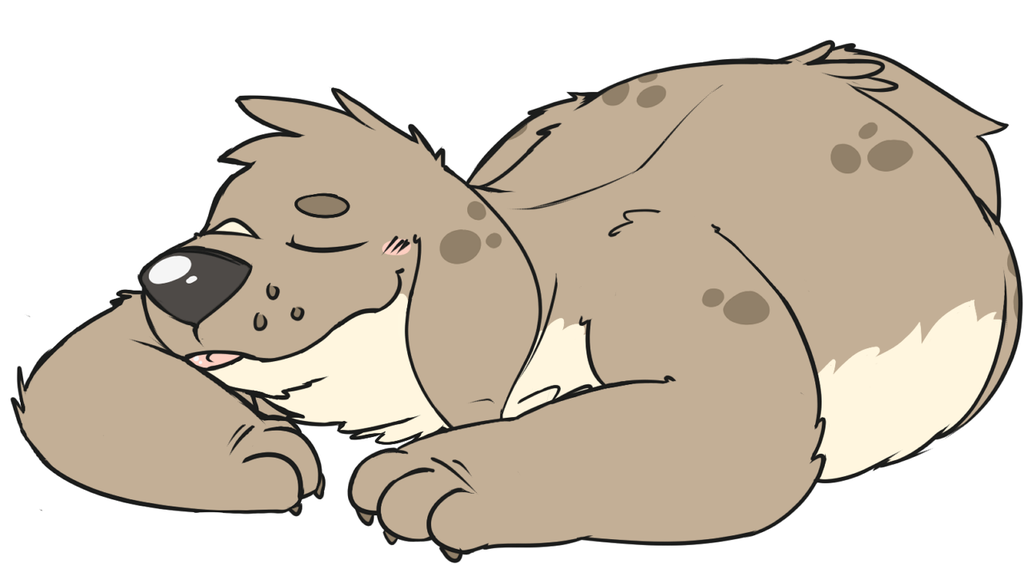 Sleepy Boof