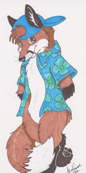 Bashful fox