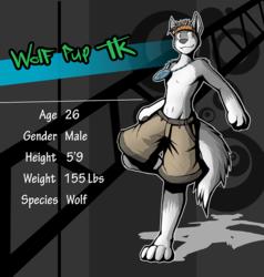 Wolf Pup TK TWEWY Style - By DracoJeff