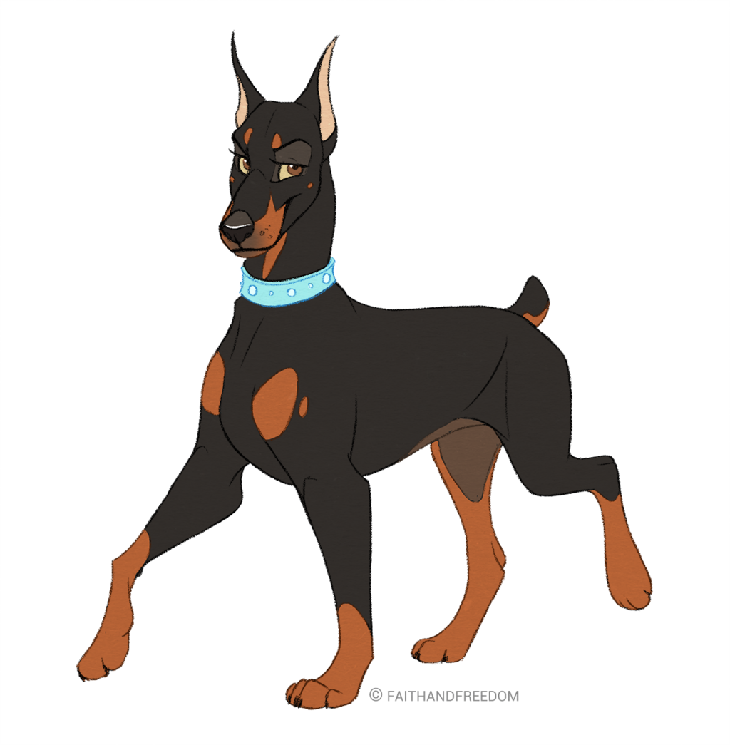Dobermann Pinscher (OPEN)