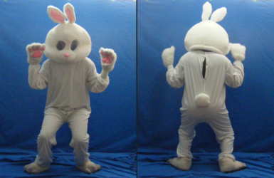 Bunny Fursuit/Cosplay (Front and Back)
