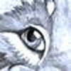 avatar of Eliv