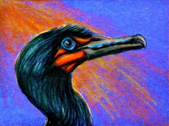 ACEO--Double-crested Cormorant