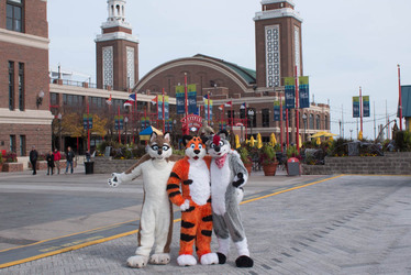Furries In The City