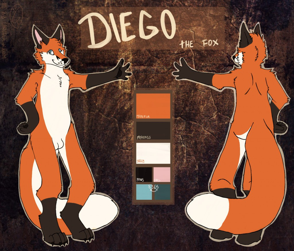 Reference Sheet Diego