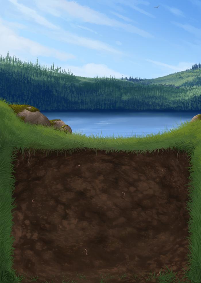 A hole lotta nature
