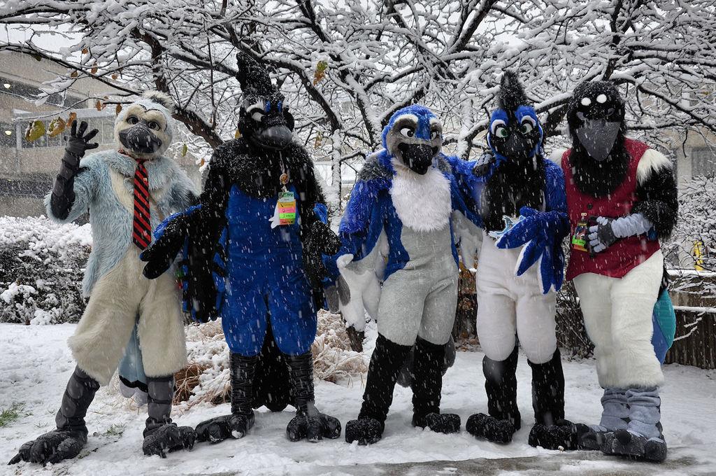 Snow Corvids