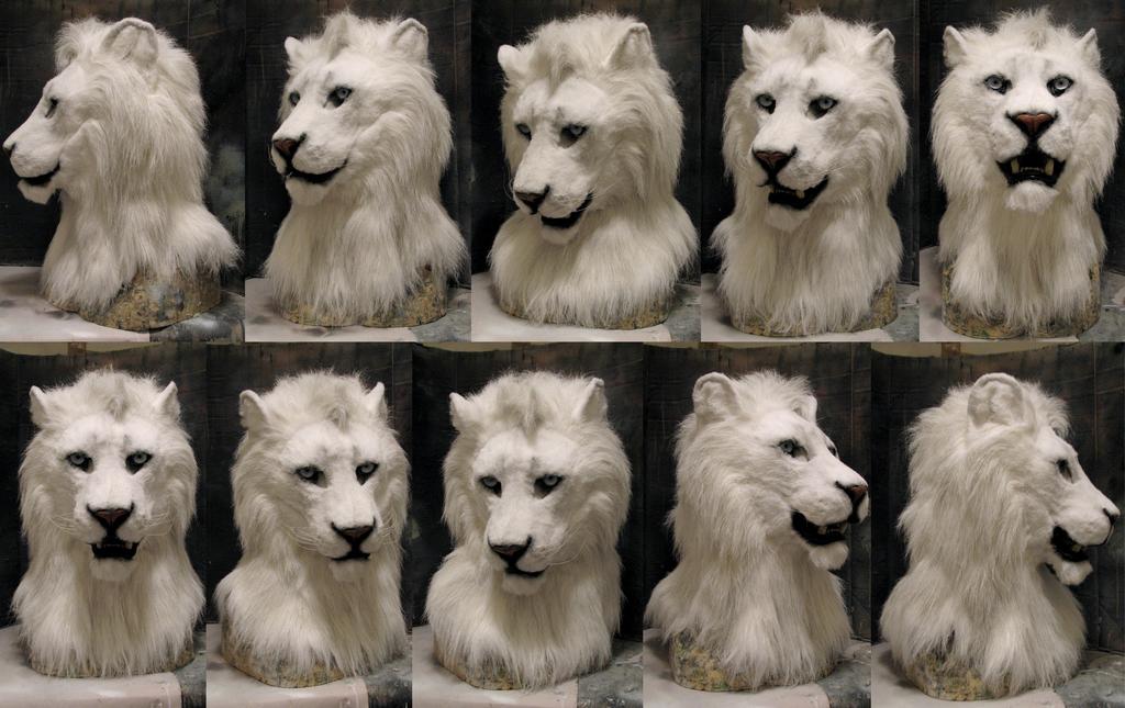 white lion head commission