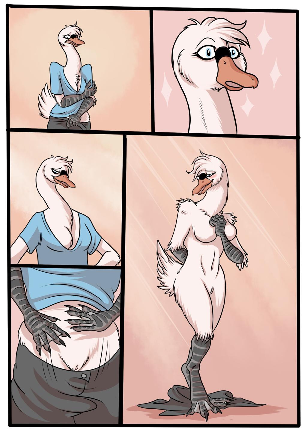 That Swan Fact P2